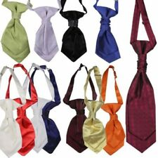 Polyester Cravat Ties for Boys