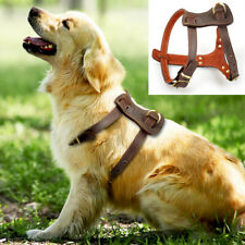 Best Genuine Leather Dog Harness for Medium Large Dogs Vest Walking Training S M