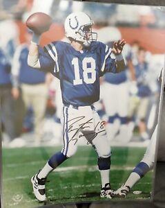 Vintage Peyton Manning, Colts Signed 16x20 Photo - Upper Deck UDA
