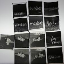 Vtg 1970s Life Photo Snapshot Negatives German Shorthaired Pointer Hunting Dogs