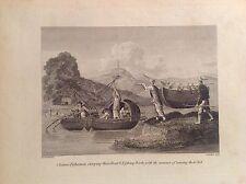 pescatori cinesi sollevano barca acquaforte orig 1802 sec  viaggi COOKE CINA