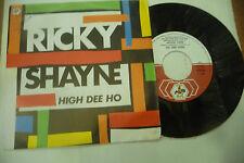 "RICKY SHAYNE""HIGH DEE HO-disco 45 giri BABY 1986"" RARISSIMO"