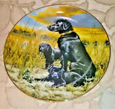 Vintage The Hamilton Collection Plate Hand Painted Labrador Retrievers Dogs 22cm