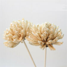Flower Reed Fragrance Diffuser No Fire Replacement Sticks Aroma Rattan Home