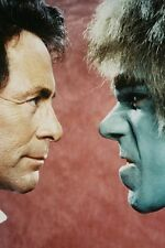 Lou Ferrigno facing Bill Bixby The Incredible Hulk 11x17 Mini Poster
