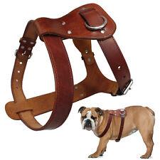 Best Genuine Leather Dog Harness for Pitbull Bulldog Boxer Medium Large Dogs
