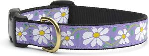 Up Country Daisy Collar, Large