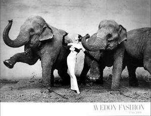 Richard AVEDON Dovima With Elephants Paris 1955 Poster