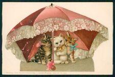 Art Nouveau Cat Theo Stroefer serie IV 5390 postcard TC3142