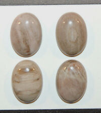 Petrified Wood Cabochons 13x18mm with 5.5mm Dome Set of 4 (9720)