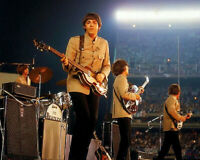 THE BEATLES Shea Stadium 1965 ~  PLUS Budokan Stadium Japan Live 1966 PLUS MORE!
