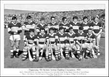 Tipperary All-Ireland Senior Hurling Champions 1971: GAA Print