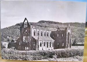 RPPC Postcard TINTERN ABBEY Wales UK England Church Photo Ministry of Works GB