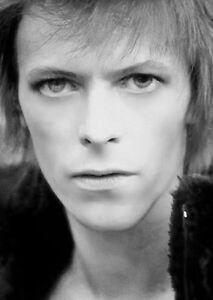 David Bowie Portrait. Stunning in Black + White. Kodak  A4 Photo. 1st. Class UK