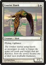 4x 4 x Courier Hawk x4 Conspiracy Common MTG MINT PACK FRESH UNPLAYED