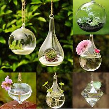 New Home Garden Clear Glass Flower Hanging Vase Planter Terrarium Container Gift