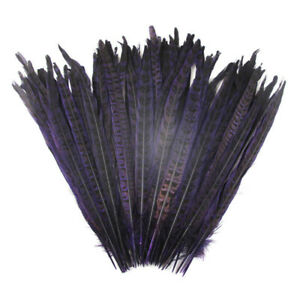 50/100pcs high quality natural pheasant tail feather 10-12 inches / 25-30 cm