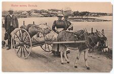 Vintage Bermuda Washer Women BW Postcard Unused Weiss & Co. Made in Germany