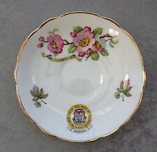Regency Bone China STATE OF MICHIGAN Apple Blossom SAUCER ONLY Made in England