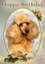 Poodle Dog Design A6 Textured Birthday Card BDPOODLE-1-apricot by paws2print