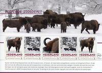 Netherlands 2017 MNH Bison Bisons Endangered Wild Animals 5v M/S Stamps