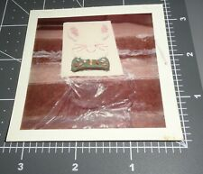 BUNNY Rabbit CAKE Candy Jelly Beans EASTER Dessert Vintage COLOR Snapshot PHOTO
