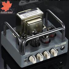 BIYANG Wangs Mini 5 Powerful 5 Watt All Tube Guitar Amplifier Amp Head New
