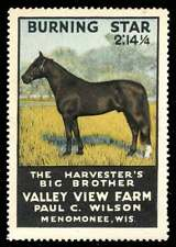 USA Poster Stamp - Burning Star Race Horse - 1915 Valley View Farm, Wisconsin