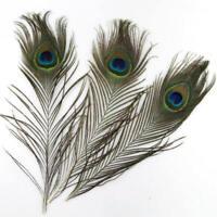 20PCS Beautiful Peacock Feathers 70-80cm Christmas DIY Craft Wedding Party RPM