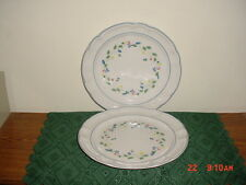 "2-PC ""FLORAL EXPRESSIONS"" LRG 10 3/4"" DINNER PLATES/FLORAL/WHITE-BLUE/CLEARANCE!"