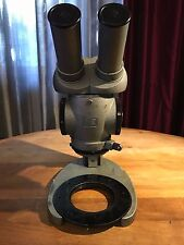 Zeiss Desktop Stereo Microscope
