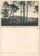 MUGELLO PITTORESCO - MONTE SORGENTE PANNA           (rif.fg. 8873)