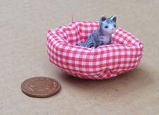 1:12 Ceramica Gatto in un IMBOTTITO PET Letto Casa Bambole Miniatura Accessorio Articolo 5776
