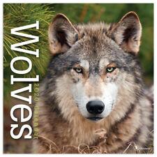 2020 Wolves Wall Calendar
