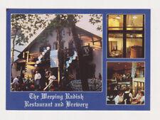 4 SAME Weeping Radish Restaurant Micro Brewery Beer Postcards Manteo NC +BONUSES