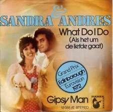 """Sandra & Andres - What Do I Do (Als Het Um De Lie 7"""" Vinyl Schallplatte - 25305"""
