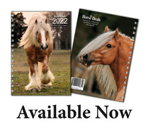 Horse Deals Diary 2022