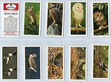 Cigarette cards British Birds  Carreras mint set 1976