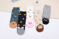Fad Cute Fruit Socks Ladies Lovely Animal Cat Footprint Dog Sock Women Socks