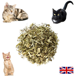 Catnip Plant Dried Herb Organic Cat Grass and Cat Toys - 1st Class Postage!