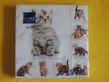 1 Packung 20 Servietten MEOW cats Katzen viele KITTEN Serviettentechnik chat 1/4