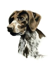 German Short Haired Pointer Dog 13 x 17 Large Art Print by Artist Dj Rogers