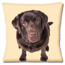 "Chocolate Labrador 16""x16"" 40cm Cushion Cover Photoprint 'Looking Up' Choc Lab"