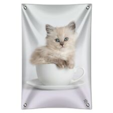 Ragdoll Tiffany Cat Kitten Tea Cup Ride Home Business Office Sign