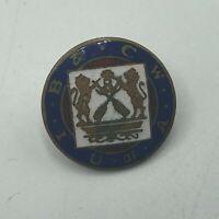 Vintage U Of A IB & CW Screwback Lapel Pin Crossed Oars Royal Lions Unknown Q4