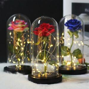Enchanted Eternal Rose Flowers In Glass LED Lights Christmas Valentine's Gifts