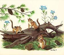 Eastern Chipmunk  Gene Gray Vintage Art Card Old Stock