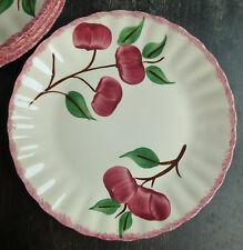 Blue Ridge Crab Apple lunch plate(s) 9 1/2 inches red trim