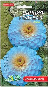 Zinnia haageana Blue Flower Seeds from Ukraine