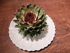 "Vintage ICTC LONDON ARTICHOKE PLATE / HORS D'OEUVRES DISH (10"", 25.5cm)"